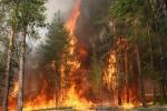 З вогнем слід бути надзвичайно обережними. Тим більше у таку спеку