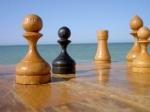 Міжнародний шаховий турнір