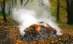 Спалювання опалого листя заборонене законом!
