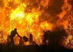 У вогні загинуло двоє людей