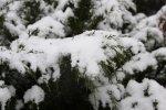 Зима прийшла у Світловодськ