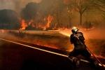 Не варто нехтувати правилами поводження з вогнем у лісі