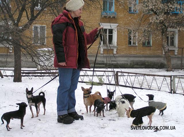 9 собачок загальною вагою аж… 18 кілограм