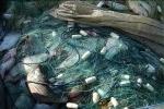 У браконьєрів вилучили майже півтонни риби