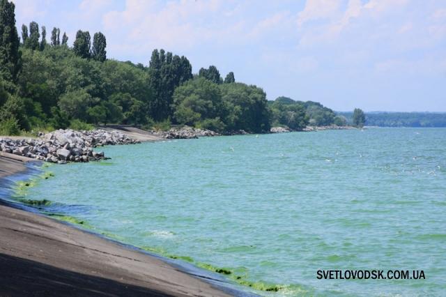 Зелене море. Тішить, що не гірше