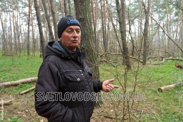 Отказать пенсионеру Петухову в очистке леса решил Светловодский горисполком