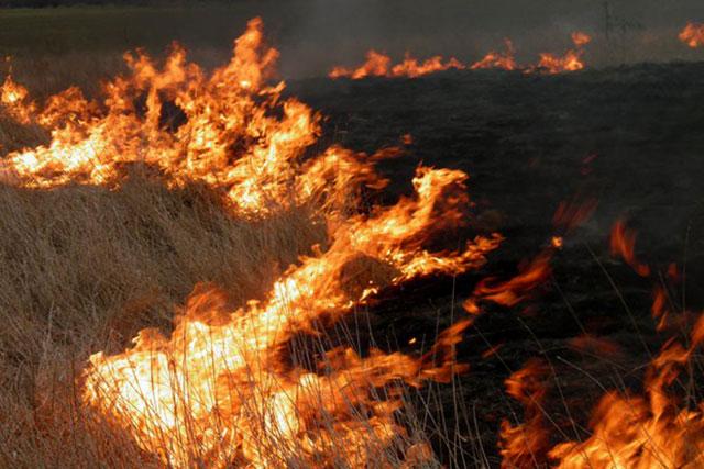 Минулого тижня світловодські вогнеборці загасили охоплені вогнем траву, автомобіль, сарай