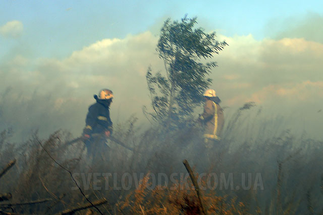 Великої лісової пожежі не сталося, на щастя