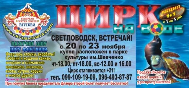 """""""Цирк на воде"""" в Светловодске! Только 3 дня!"""