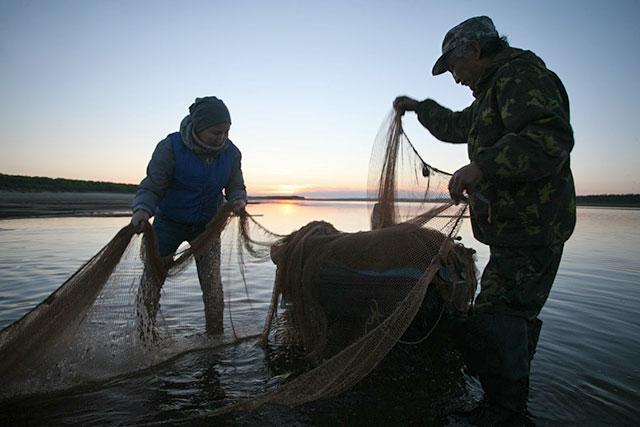 41 кг риби було виявлено в сітках браконьєрів у результаті рибоохоронного рейду в Світловодську