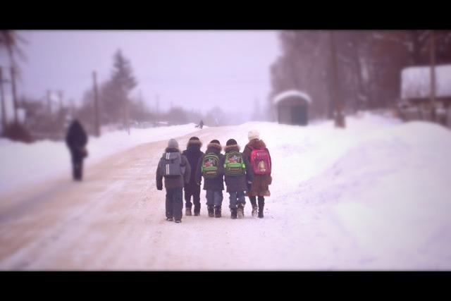 У понеділок, 8 лютого — всі до школи!