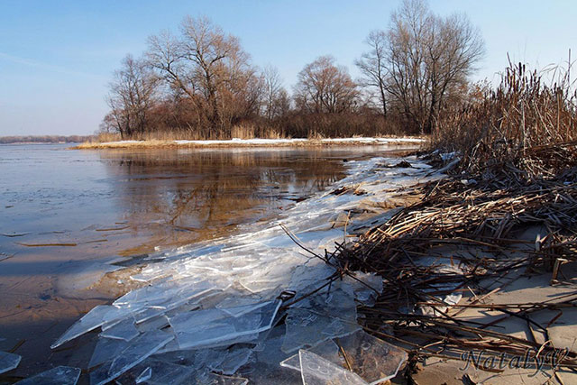 Незвичне явище — лід на Дніпрі ламається і «співає»