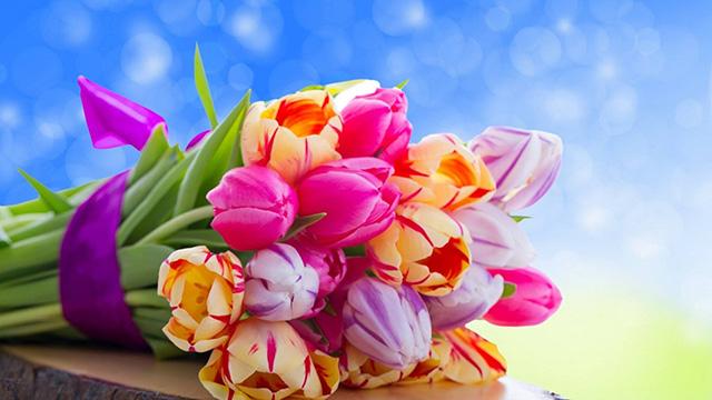 Дорогі жінки! Щиро вітаємо Вас з Міжнародним жіночим днем 8 Березня!