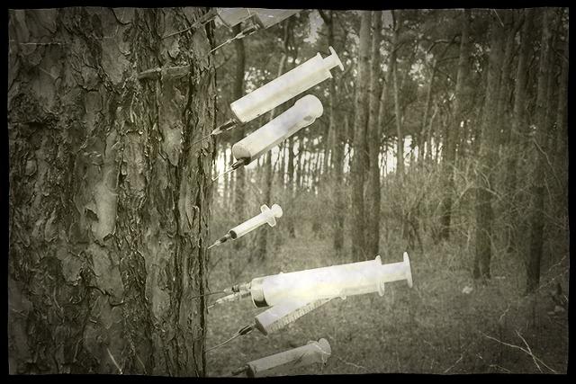 Медичні шприци — на деревах парку. Поліція швидко реагує