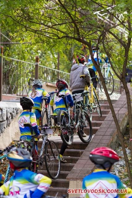 Велострокатість осіннього парку