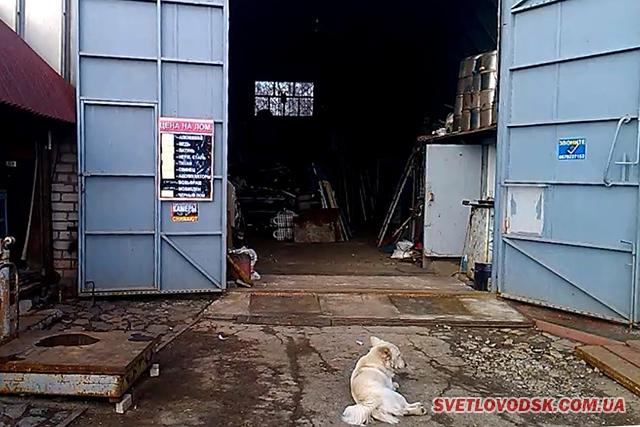 Працівники поліції викрили незаконні операції з металом
