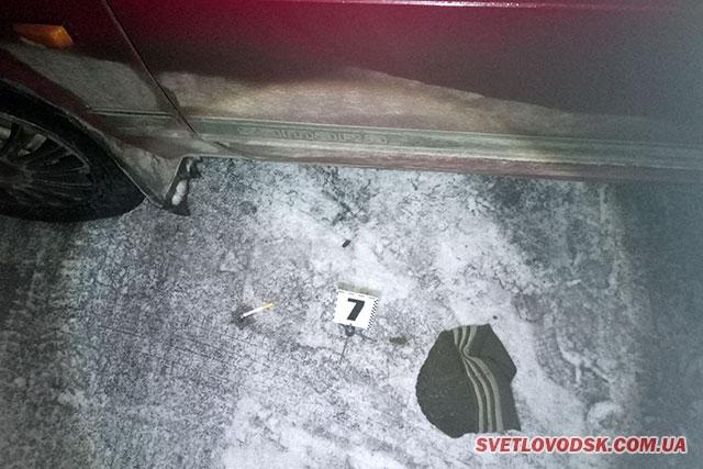 Вбивство у Світловодському районі — офіційна версія поліції