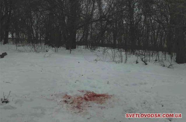 Калюжа крові біля «Літака» у Світловодську — потерпілий в реанімації, «стрілок» під вартою