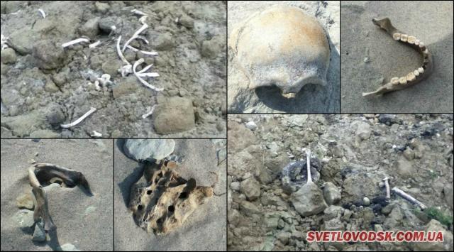 А ось і українські кістки