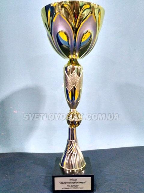 «Золотий Кубок мера» приїхав  до Світловодська