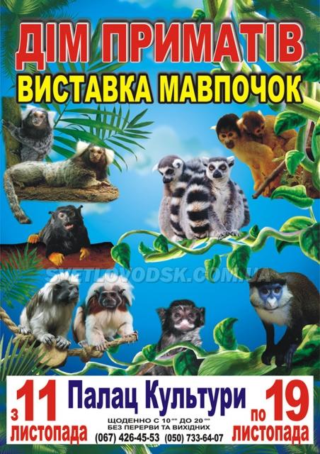 """АФІША: Виставка мавпочок """"Дім приматів"""""""