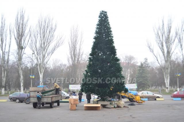 ФОТОФАКТ: Центральну площу Світловодська прикрасила новорічна ялинка