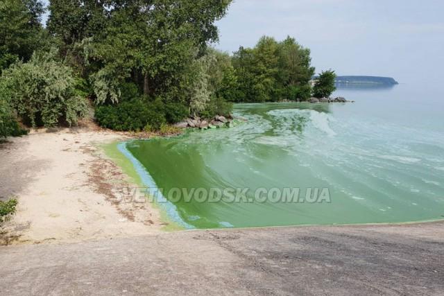 """""""На пляжах міста відпочивати небезпечно!"""" — бактеріолог Олена Малінкіна"""