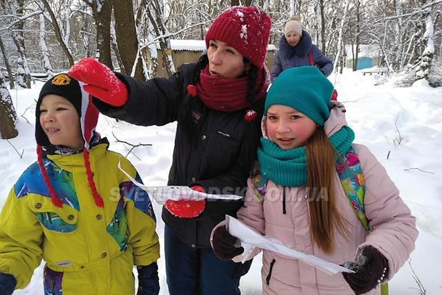 «Зимові старти» з лижною трасою відбулися у Світловодську