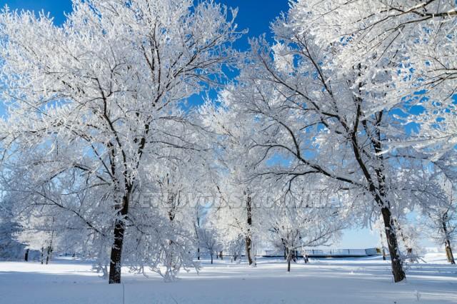 ФОТОФАКТ: Зимова казка у Світловодську