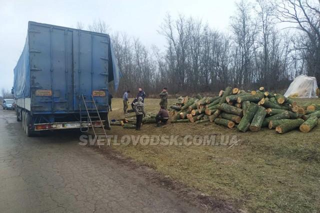 Відбудеться суд над полтавчанином, який на території Світловодщини вчинив незаконну порубку дерев на 3.8 млн грн