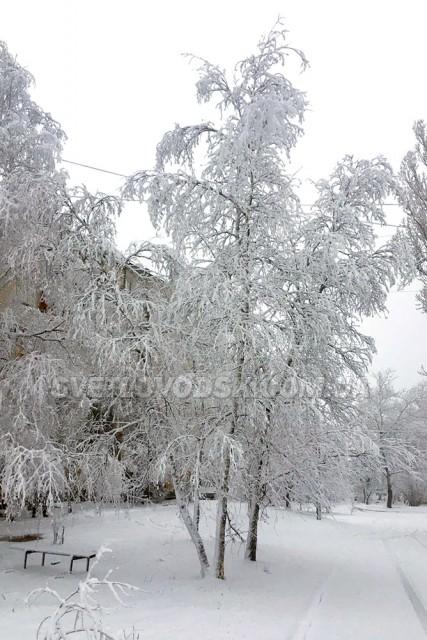 ФОТОФАКТ: Зимовий ранок у Світловодську