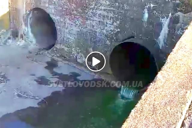 ВІДЕОФАКТ: У Світловодську зелена рідина зливається у Дніпро