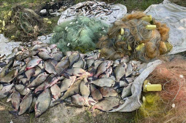 У Світловодську поліцейські вилучили у браконьєрів риби на понад 200 тисяч гривень