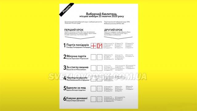 Місцеві вибори 25 жовтня: як заповнювати бюлетень нової форми