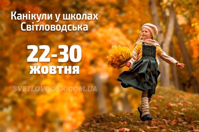 Школи Світловодська продовжать працювати попри рекомендації МОН