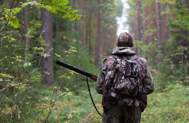 Сезон полювання на парнокопитних відкрито