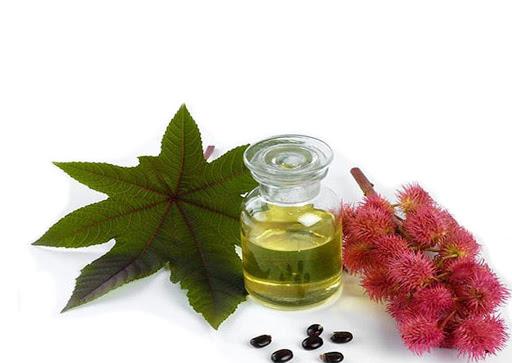 Рицинова олія: корисні властивості та можливості