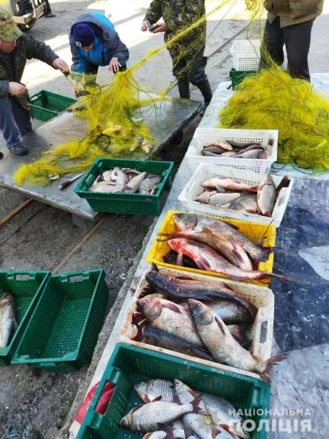 У Світловодську вилучили більш ніж півтони незаконно виловленої риби
