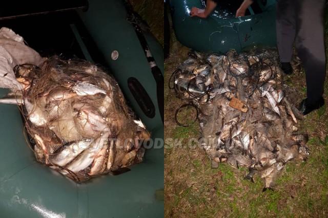 У Світловодську рибалка наніс збитки рибному господарству України на суму близько 40 тисяч гривень